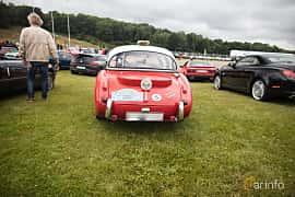 Back of Austin-Healey 3000 2.9 Manual, 126ps, 1961 at Svenskt sportvagnsmeeting 2017