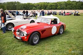 Front/Side  of Austin-Healey 3000 2.9 Manual, 126ps, 1961 at Tjolöholm Classic Motor 2016