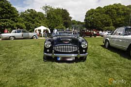 Front  of Austin-Healey 3000 2.9 Manual, 132ps, 1963 at Sofiero Classic 2019