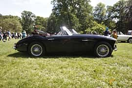 Side  of Austin-Healey 3000 2.9 Manual, 132ps, 1963 at Sofiero Classic 2019