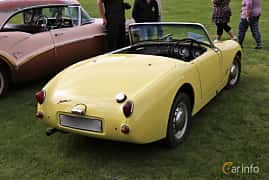 Back/Side of Austin-Healey Sprite 0.95 Manual, 44ps, 1958