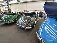 Back/Side of Mercedes-Benz 170 S Cabriolet A  Manual, 52ps, 1950 at Techno Classica Essen 2019