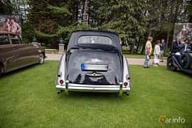 Back of Bentley R Type 4.6 Manual, 130ps, 1953 at Rolls-Royce och Bentley, Norrviken Båstad 2019