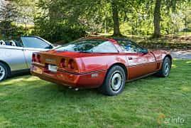 Back/Side of Chevrolet Corvette 5.7 V8 Automatic, 208ps, 1984 at Sportbilsklassiker Stockamöllan 2019