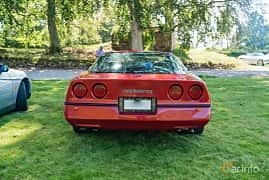 Back of Chevrolet Corvette 5.7 V8 Automatic, 208ps, 1984 at Sportbilsklassiker Stockamöllan 2019