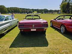 Back of Ford Mustang Convertible 4.7 V8 Automatic, 198ps, 1968 at Eddys bilträff Billesholm 2019 Tema Opel och Chevrolet