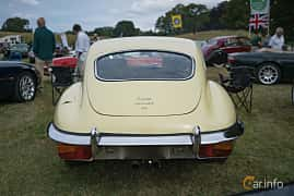 Back of Jaguar E-Type 2+2 4.2 XK Manual, 269ps, 1969 at Thulinträffen 2017
