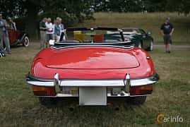 Bak av Jaguar E-Type Roadster 4.2 XK Manual, 269ps, 1970 på Thulinträffen 2017