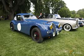 Front/Side  of Jaguar XK120 3.4 Manual, 162ps, 1953 at Sofiero Classic 2019