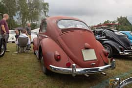 Back/Side of Volkswagen 1200 1.2 Manual, 30ps, 1959 at West Coast Bug Meet 2019