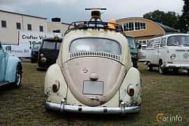 Back of Volkswagen 1200 1.2 Manual, 34ps, 1961 at West Coast Bug Meet 2019