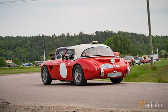 Back/Side of Austin-Healey 3000 2.9 Manual, 126ps, 1961 at Tjolöholm Classic Motor 2016