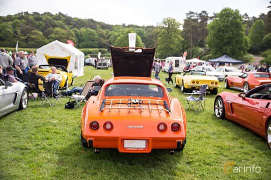 Back of Chevrolet Corvette Stingray 5.7 V8 Automatic, 213ps, 1976 at Tjolöholm Classic Motor 2016