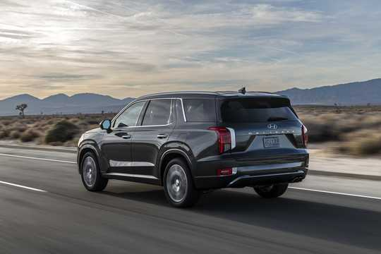 Back/Side of Hyundai Palisade 2020