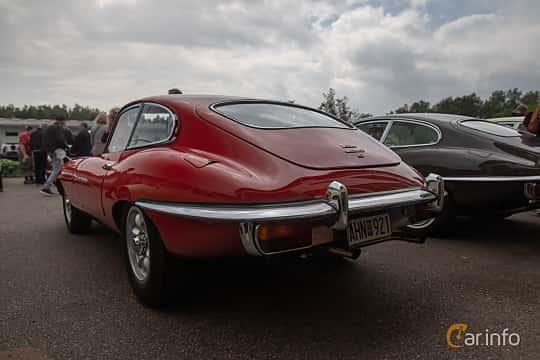 Back/Side of Jaguar E-Type 4.2 XK Manual, 269ps, 1969 at Joe's garage 2019´s stora Jaugurevent