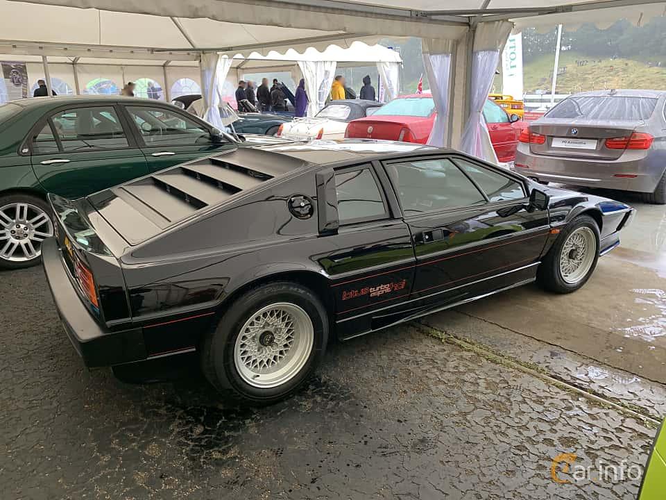 Back/Side of Lotus Esprit Turbo 2.2 Manual, 212ps, 1981 at Svenskt sportvagnsmeeting 2019