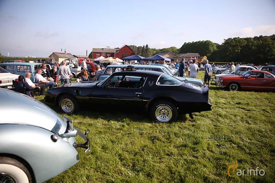 Bak/Sida av Pontiac Firebird TransAm 6.6 V8 182ps, 1977 på Tjolöholm Classic Motor 2018